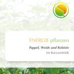 Folder-Pappel-Weide_produktfoto