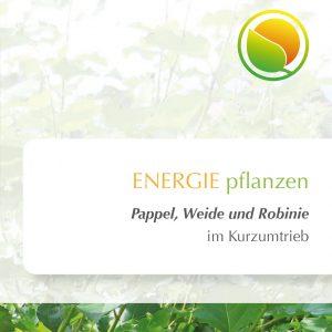 Energiewald Folder Pappel Weide