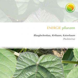 Blauglockbaum Broschüre