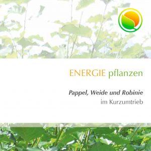 Energiewald Broschüre Pappel Weide Robinie/Akazie