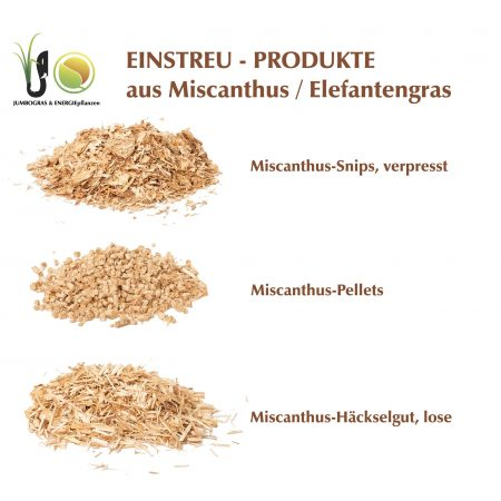 Miscanthus Elefantengras Produktsortiment