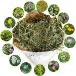 Bioheu, 1. Schnitt, Qualitäts-Großtier-Futter, Kräutervielfalt