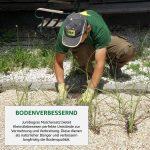 Boden verbessern mit ph-neutralem Miscanthusmulch (Rindenmulch-Ersatz)