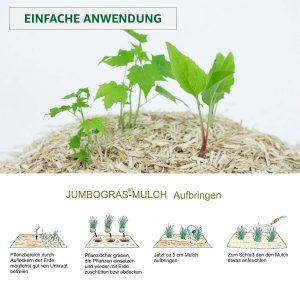 einfache Anwendung - Anleitung um Miscanthus-Mulch aufzubringen: Boden lockern, Unkraut entfernen, Pflanze setzen, 5cm Mulch aufbringen, leicht bewässern